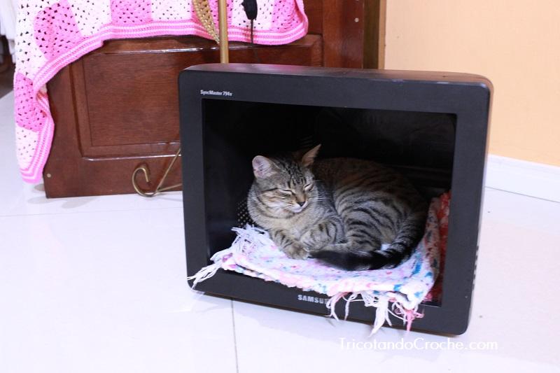 Casinha de Gato feita de Monitor
